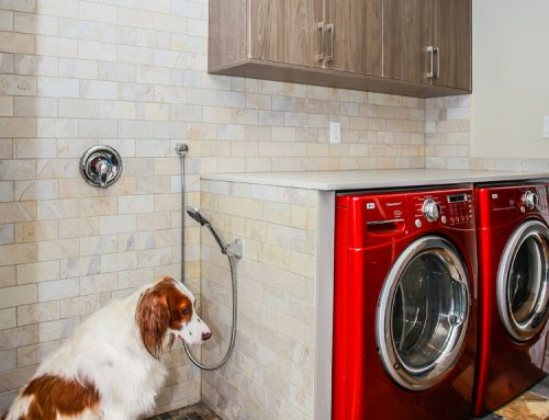 Laundry with Dog Shower